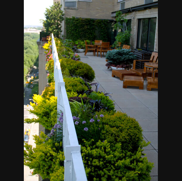 Miguel pons landscaping for 50 park terrace west